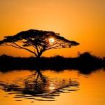 Una delle grandi ricchezza dell'Africa: i Proverbi!