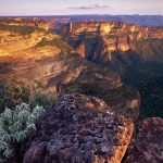 Mato Grosso e El Dorado: due luoghi leggendari del Brasile