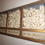 Il Museo del Baco da Seta a Colli del Tronto