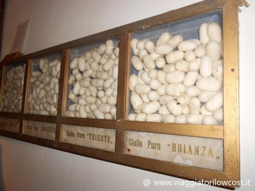 Museo del Baco da Seta a Colli del Tronto