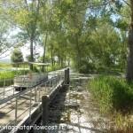 La Riserva Naturale del Lago di Montepulciano