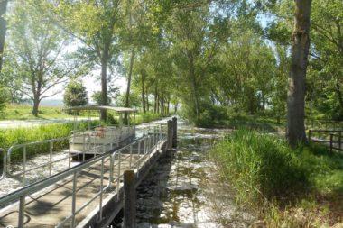 Battello Riserva Naturale Lago di Montepulciano