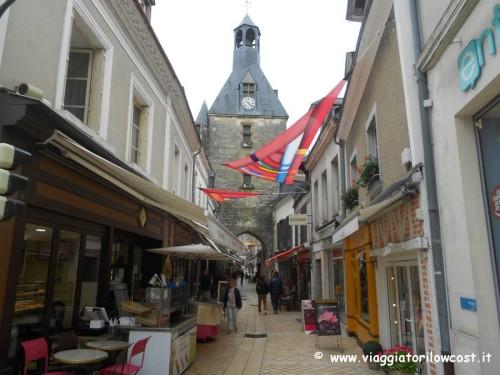 Tour castelli della Loira borgo di Amboise